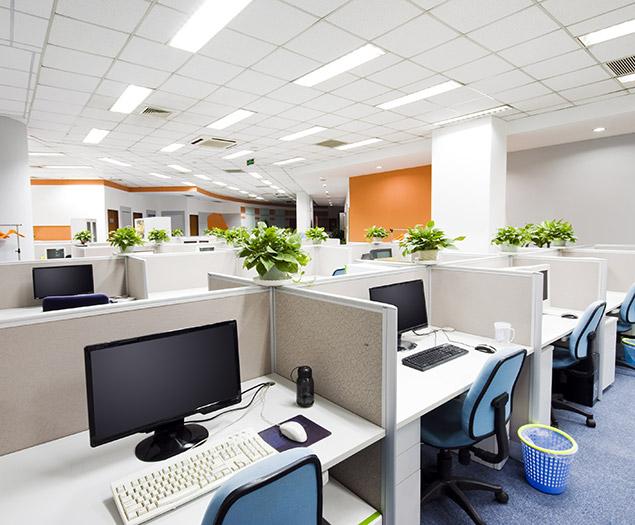 allestimento sale, uffici e strutture servizio di vivaio cecchini